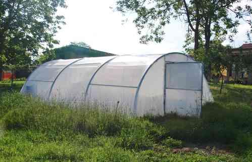 Invernadero 5 x 7,5 metros
